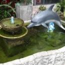 dolphin statue koh tao