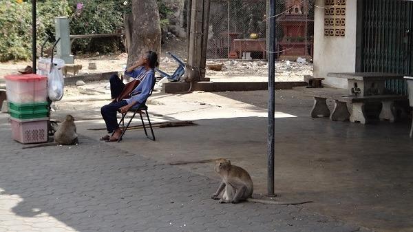 monkey and lady Phetchaburi