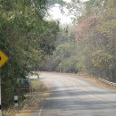 Mae Hong Son Highway 1009