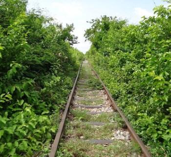 Bamboo Train Tracks Near Battambang