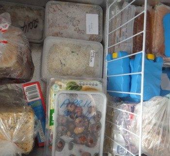 freezer-contents1