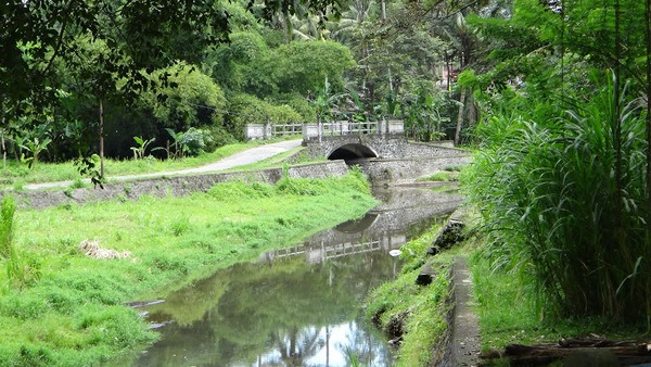 River and Bridge Bali