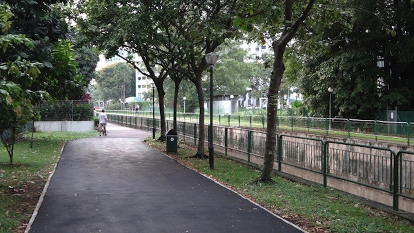 Park Walkway In Singapore