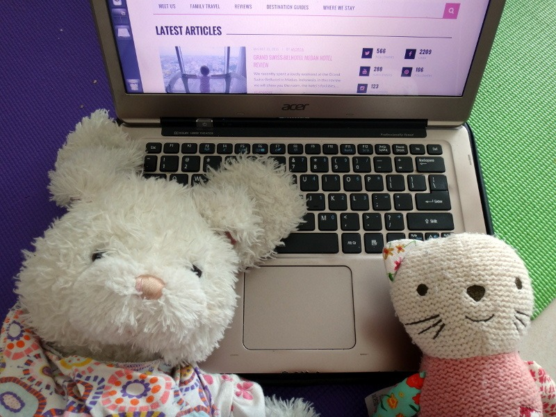 Bunny Cat and Laptop in Penang